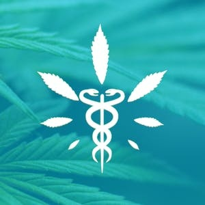 SF State Online Courses Medical Cannabis for Pain Control for San Francisco State University Students in San Francisco, CA