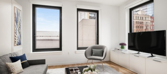 Housing Near NYU Caesura- 904 (Furnished Studio 1 BA)